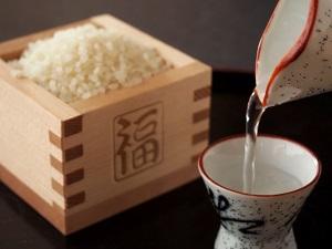 日本酒とその原料であるお米の写真画像