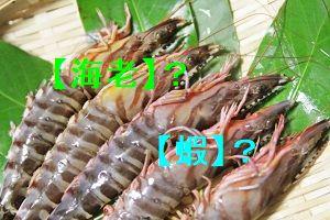 「海老」と「蝦」、どちらも「えび」のことですが、なぜ漢字が2種類あるのかという疑問を表示した「えび」の画像