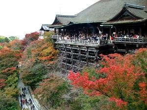 「清水寺の舞台」の写真画像