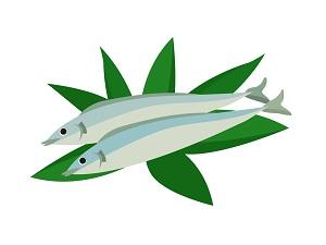 「青魚」のイラスト画像