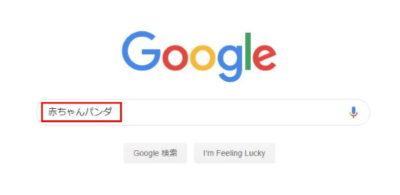 Google検索窓に「赤ちゃんパンダ」と入力した画像