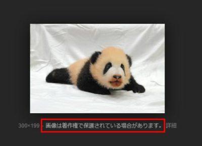 「画像は著作権で保護されている場合があります。」と注記されている画像